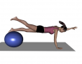 Stability Ball Advanced Opposite Arm and Leg Raise