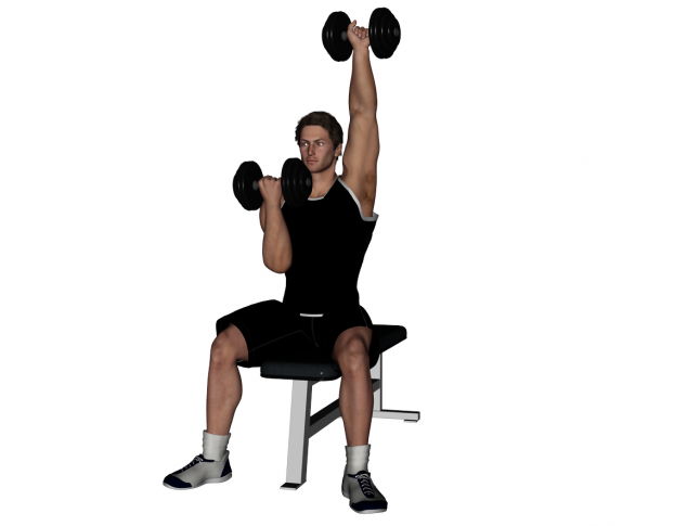 seated dumbbell arnold presses