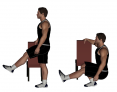 Assisted Pistol Squat