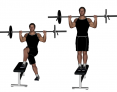 Barbell Crossover Step-Up