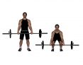 Barbell 3/4 Deadlift