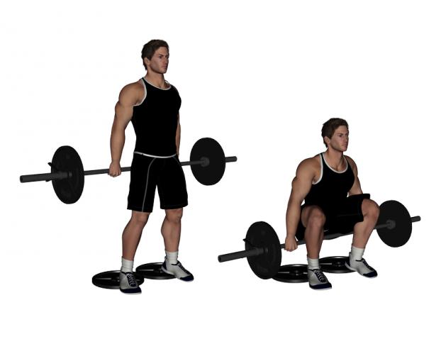 Image result for hack squat