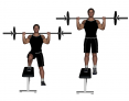 Barbell Lateral Step-Up