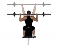 Seated Barbell Back Press