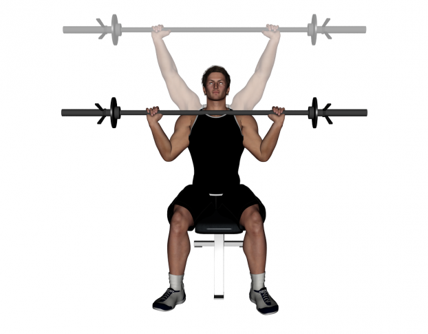 Barbell Seated Shoulder Military Press images