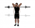 Barbell Standing Upright Row