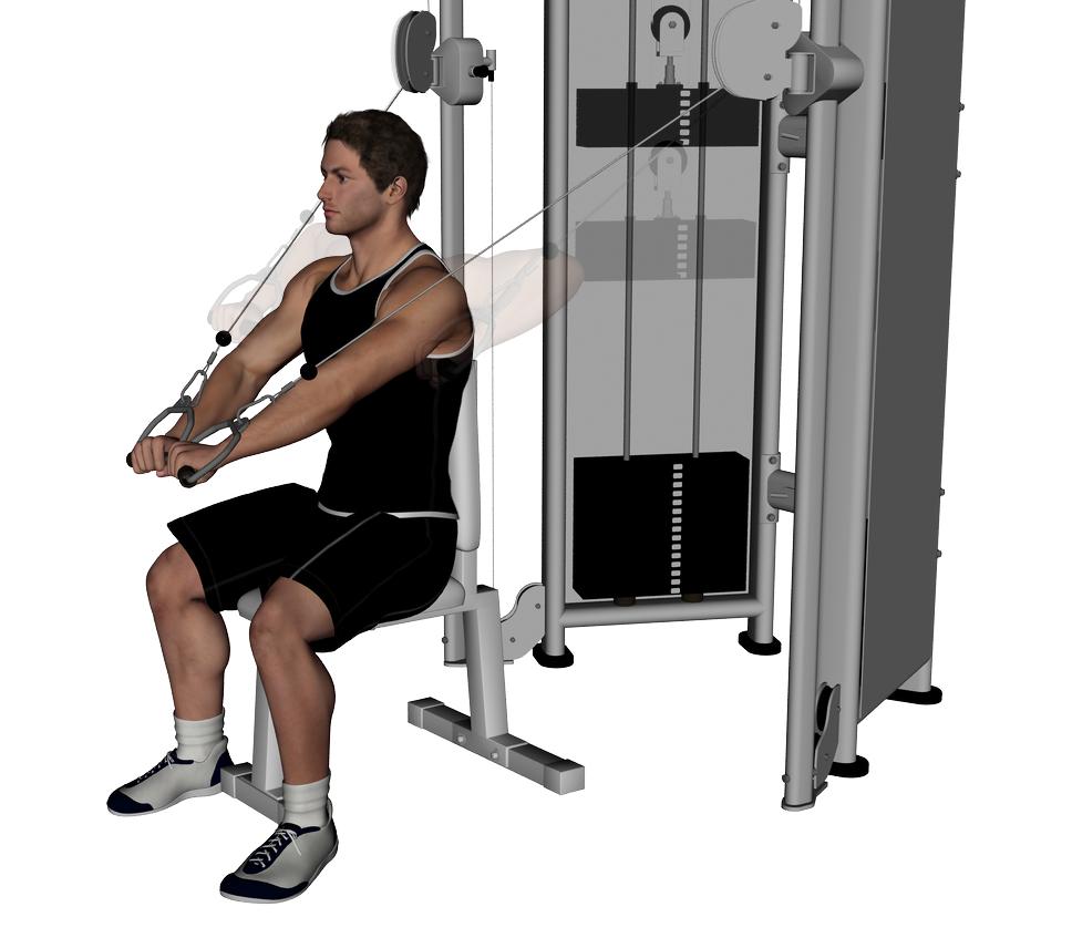 chest press machine vs bench press