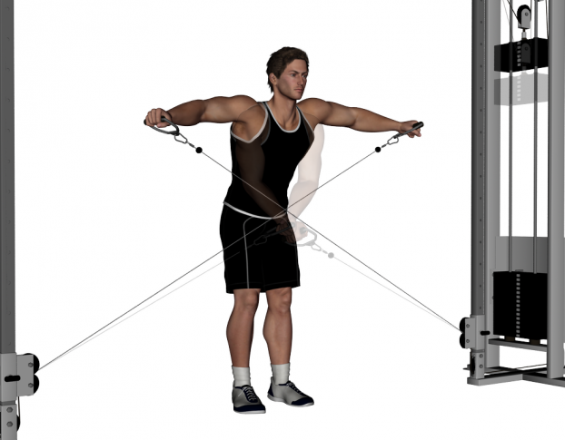 cable lateral raise video