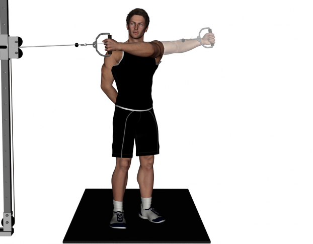 The gallery for --> Wide Grip Lat Pull Down
