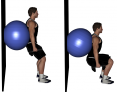 Dumbbell Ball Wall Squats