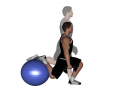Dumbbell Bulgarian Split Squat on Ball