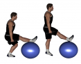 Dumbbell Elevated Front Foot on Ball Split Jumps
