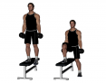 Dumbbell Lateral Step-up with One Foot Off