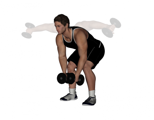 How To Dumbbell BentOver Raise