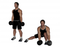 Dumbbell Side Lunge and Touch