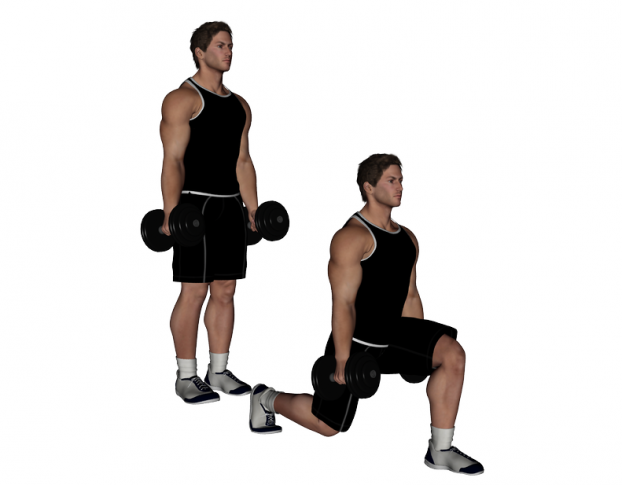 Dumbbell Bench Lunges 28 Images The 15 Best Lunge