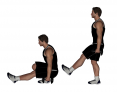 Dumbbell Standing Single Leg Squat