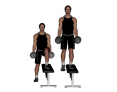 Dumbbell Standing Step-Down