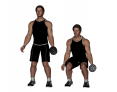 Dumbbell Unilateral Half Squat