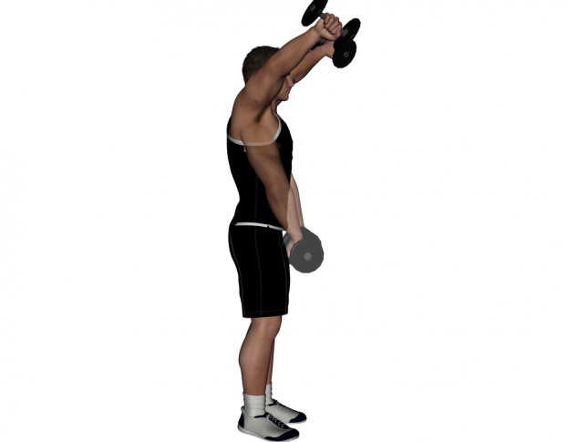 seated-and-bent-over-dumbbell-preacher-curls