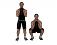 Dumbbell Standing Goblet Squat