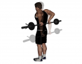 Barbell Standing Rear Deltoid Raise