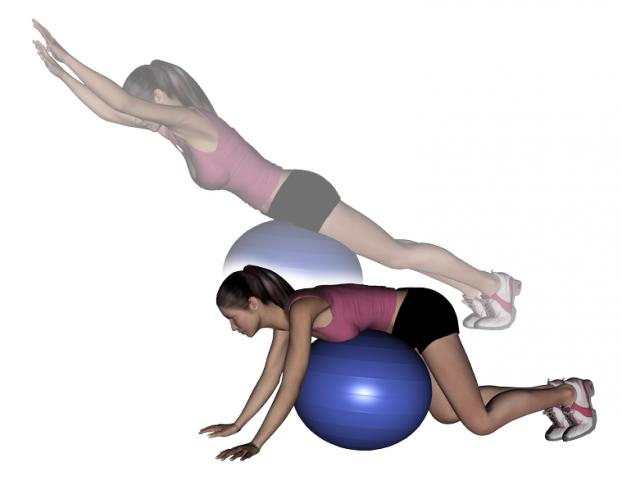 Stability Ball Exercises Pdf Stability ball prone diagonal