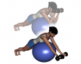Stability Ball Prone Intermediate Bilateral Dumbbell Preacher Curls