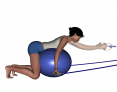 Stability Ball Kneeling Bilateral Tubing Shoulder Extensions (Lat Pulls)