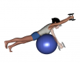 Stability Ball Prone Advanced Bilateral Dumbbell Front Raise