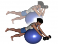 Stability Ball Prone Advanced Bilateral Dumbbell Preacher Curls