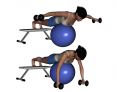 Stability Ball Prone Advanced Bilateral Rear Deltoid Dumbbell Fly