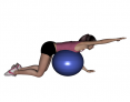 Stability Ball Prone Alternating Arm Lifts with Ball on Trunk