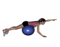 Stability Ball Prone Alternating Arm Lifts with Ball under Hips