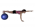 Stability Ball Prone Alternating Arm Lifts with Ball under Toes