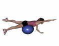 Stability Ball Prone Alternating Bird Dog with Ball under Hips