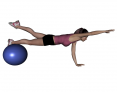 Stability Ball Prone Alternating Bird Dog with Ball under Shins