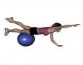 Stability Ball Prone Alternating Bird Dob with Ball under Thighs