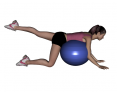 Stability Ball Prone Alternating Leg Lifts with Ball on Trunk