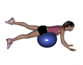 Stability Ball Prone Alternating Leg Lifts with Ball under Hips