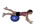Stability Ball Prone Alternating Leg Lifts with Ball under Thighs