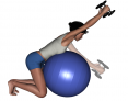 Stability Ball Kneeling Bilateral Dumbbell Front Raise