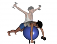 Stability Ball Prone Bilateral Low to High Dumbbell Reverse Fly
