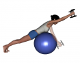 Stability Ball Prone Intermediate Bilateral Dumbbell Front Raise