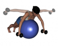 Stability Ball Prone Intermediate Bilateral Rear Deltoid Dumbbell Fly
