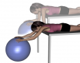 Stability Ball Prone Pendulum From Elevated Surface