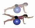 Stability Ball Prone Quadruped