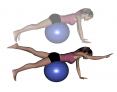 Stability Ball Prone Quadruped
