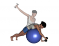 Stability Ball Prone Unilateral Dumbbell Reverse Fly