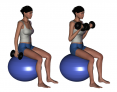 Stability Ball Sitting Bilateral Dumbbell Arm Curl